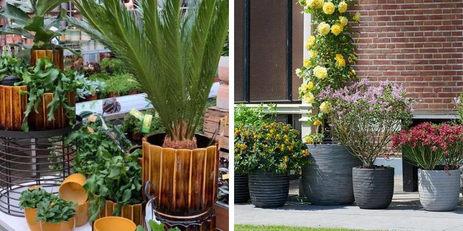 De mooiste potten voor buiten kopen? | Toptuincentrum.nl