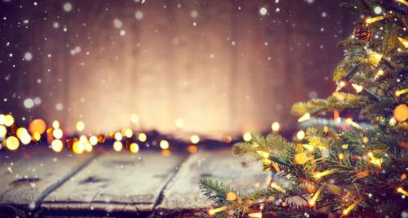 Kerst verlichting kopen? | Toptuincentrum.nl