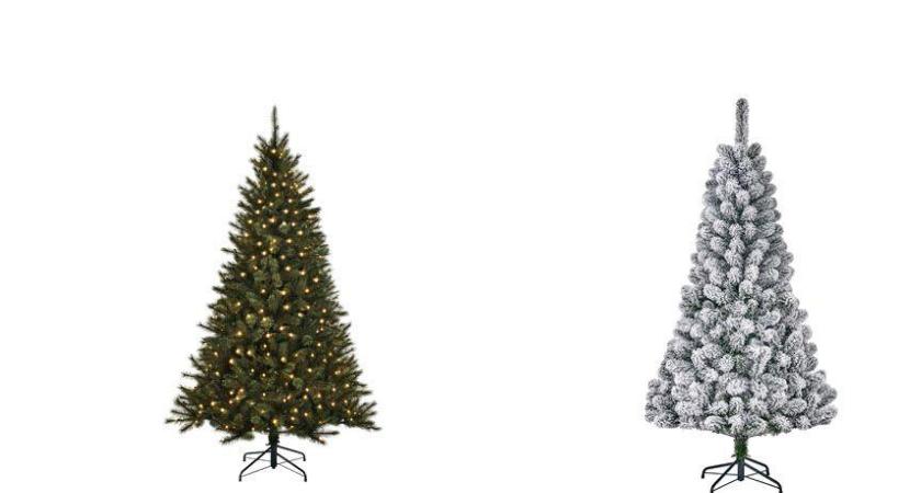 Kerstbomen kopen bij Toptuincentrum.nl | Bezoek onze webshop