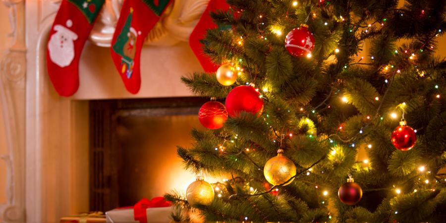 Kerstboomverlichting kopen? | Bestel online op Toptuincentrum.nl