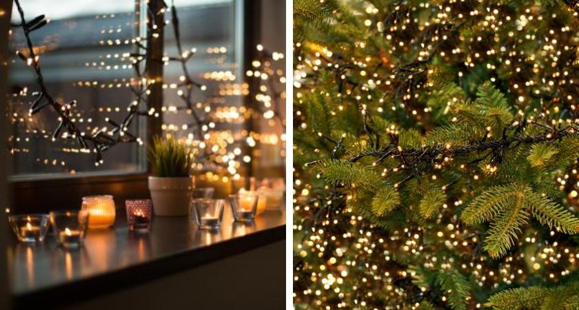 Kerstverlichting binnen én buiten | Toptuincentrum.nl