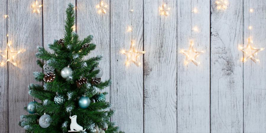 Kerstverlichting op batterijen kopen? | Bestel online op Toptuincentrum.nl