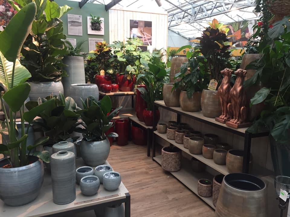 Binnenpotterie voor kunstplanten in Den Bosch