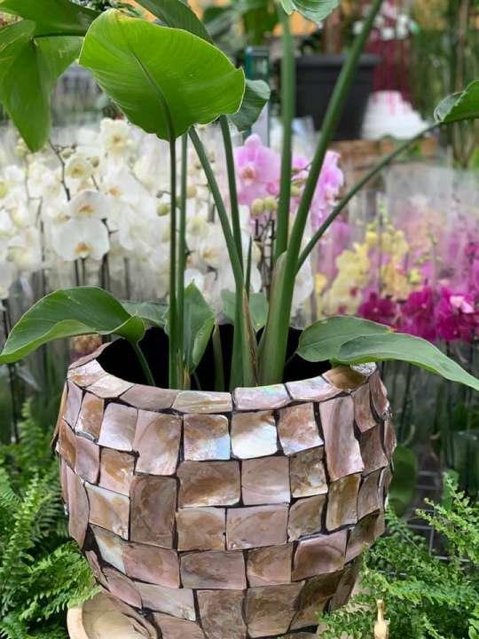 Bijzondere vaas voor buitenplant